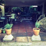 Welcome to JHB - my old home. Mom's patio, Johannesburg